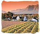 Stunning Winelands landscape on the Western Cape province, South Africa