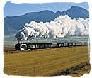 Great steam train travel experience for tourists in South Africa