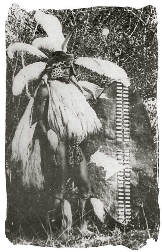 An old 19th century photograph of a Zulu warrior - The Zulu people, Zulu Tribe and legendary King Shaka Zulu