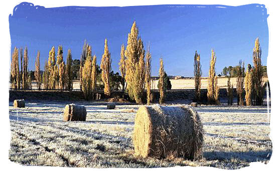 Early morning frost in winter - South Africa Weather, Climate and Weather in South Africa