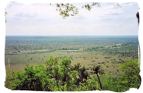 Landscape in the Kruger National Park viewed from Nkumbe viewing site south east of Tshokwane