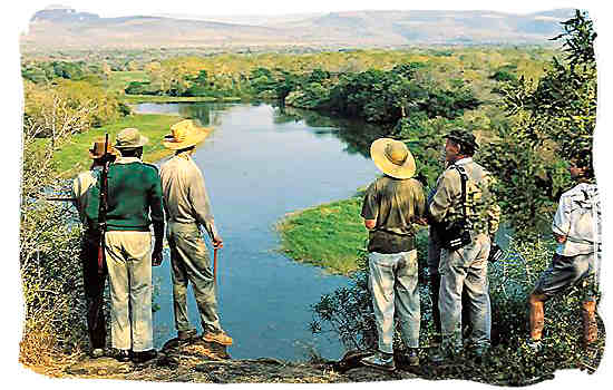 A walking safari in South Africa