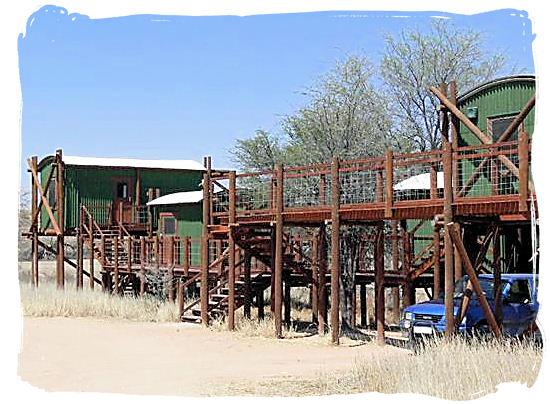 Wooden walkways between the cabins - Urikaruus Wilderness Camp, Kgalagadi Transfrontier Park