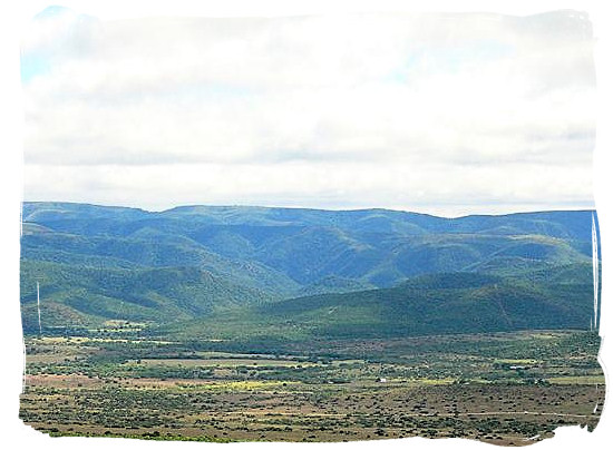 Landscape in the Addo Elephant National Park - National parks in South Africa