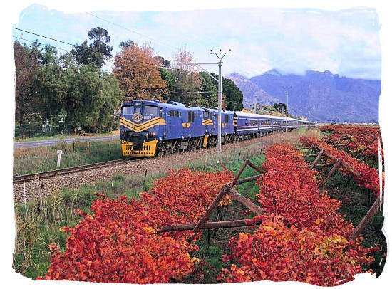 The luxurious Blue Train which runs between Cape Town and Pretoria - Cape Town Maps, Cape Town Places and Cape Town Guide