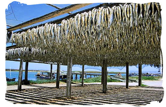 Bokkems (Wind-dried fish) - South African food adventure, South Africa food safari