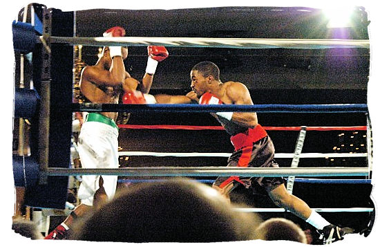 Action inside boxing ring - South Africa Sports Top Ten South African Sports