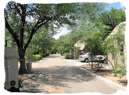 Camp road with bungalows on the right in Orpen Camp in the Kruger National Park, South Africa
