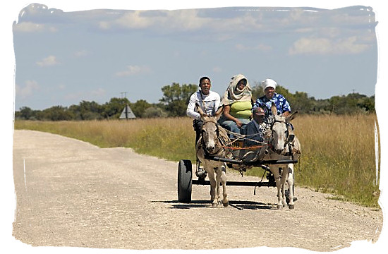 The donkey cart has long been a traditional form of transport for many rural people - languages of south africa, south african language