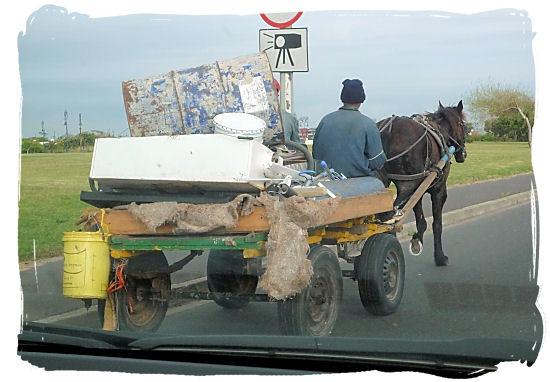 Be wary of 4 wheels x 4 legs slow-mo donkey cart traffic