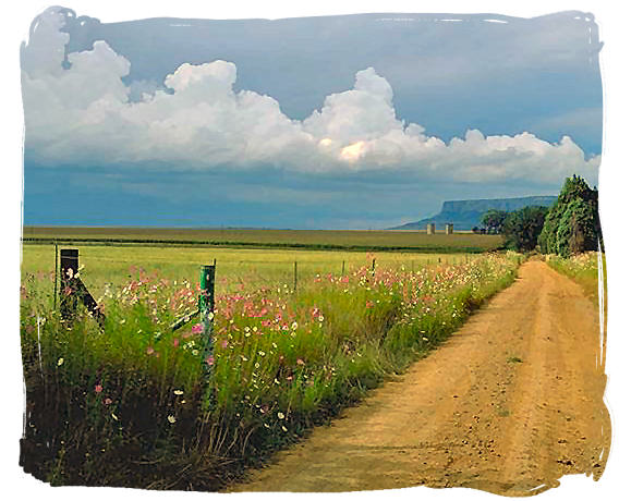 Farmroad in the Free State province