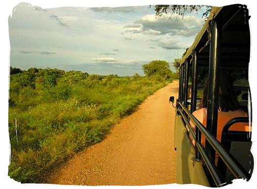 Evening game drive - Skukuza Safari, Travel and Accommodation