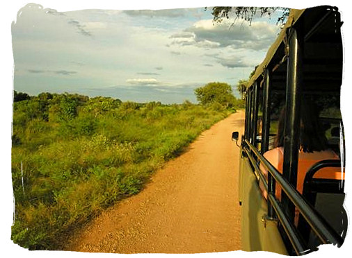 Evening game drive near Skukuza rest camp - Kruger National Park Camps, Kruger National Park, Map, Tours, Safaris