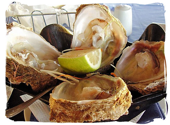Knysna's famous oysters - Festivals of South Africa