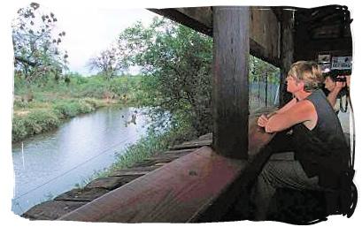 Game viewing hide at Bateleur camp - Bateleur Camp, Place of the Bateleur Eagle, Kruger National Park