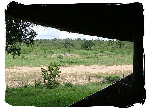 Bird and game viewing hide overlooking the Mbiyamiti river bed at the bushveld camp