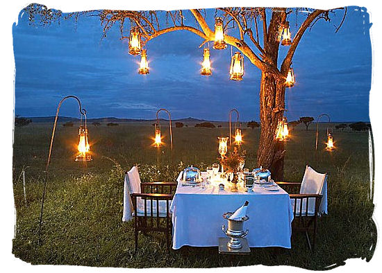 No better way to spend your honeymoon than on a safari in South Africa