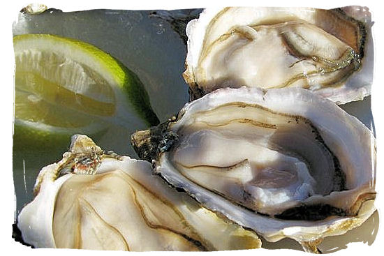 The famous and deliciously fresh oysters straight from the Knysna River estuary - Knysna Activities, Attractions and Festivals in South Africa