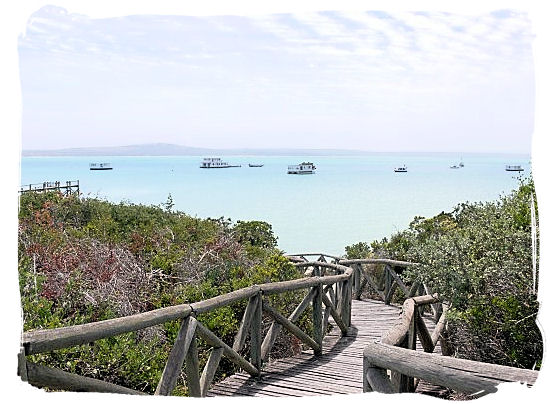 View of the Lagoon with the Houseboats floating in the distance - West Coast National Park Accommodation, South Africa National Parks