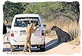 Tsakane Safari Company