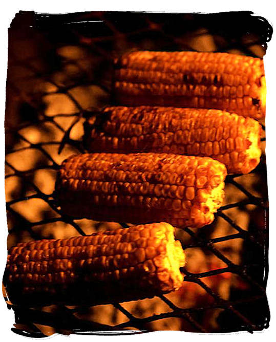 Mielies (maize cobs) grilled directly on the grill over the coals are a delicacy not to be missed - South African barbecue tips and ideas