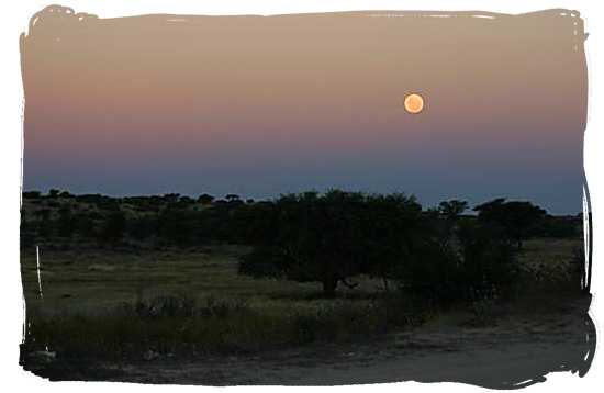 Moon over the Kgalagadi landscape - Kieliekrankie Wilderness Camp, Kgalagadi Transfrontier Park