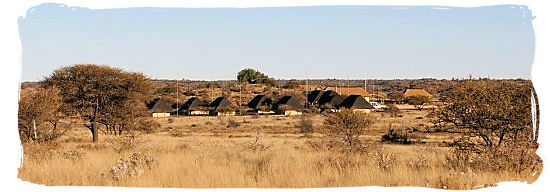Mosu lodge panorama - Mokala National Park in South Africa, endangered African animals