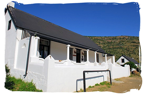 The Doornhoek guest house - about the Cape Mountain Zebras in the Mountain Zebra National Park