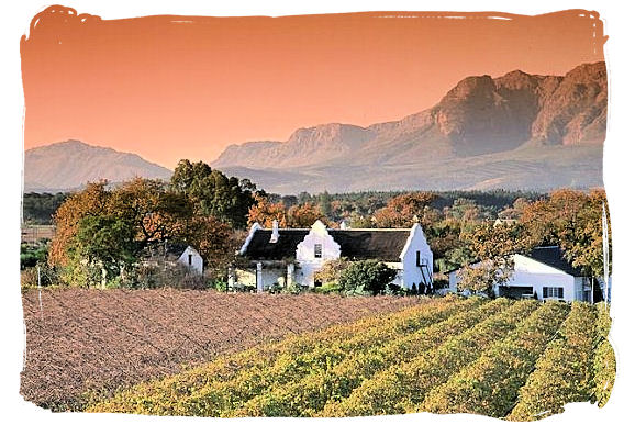 Framed by the majestic Groot and Klein Drakenstein and Franschhoek mountains, the Paarl Winelands are just to the north of Stellenbosch