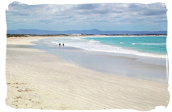 Experience the solitude on the beautiful Struisbaai beach