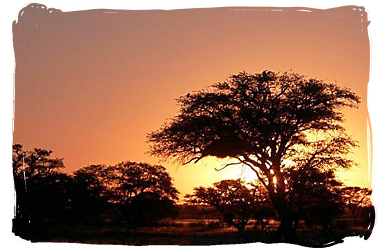 Sunset in the Kgalagadi - Grootkolk Wilderness Camp, Kgalagadi Transfrontier Park