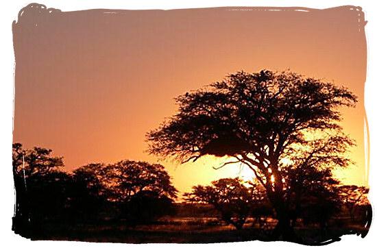 Sunset in the Kgalagadi - Grootkolk Wilderness Camp, Kgalagadi Transfrontier Park