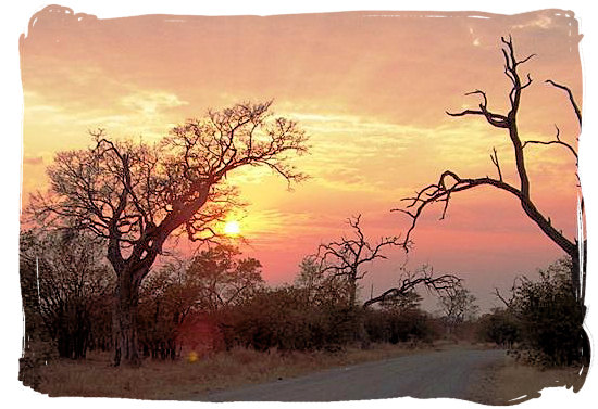 Berg en Dal Rest Camp, Kruger National Park, South Africa - Sunset landscape in the Kruger National Park