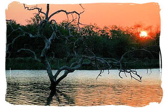Sunset over the Pioneer dam near Mopani camp