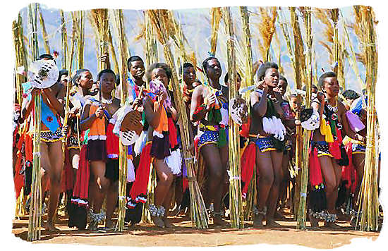 Swazi maidens performing the annual Reed Dance - Black People in South Africa, Black Population in South Africa
