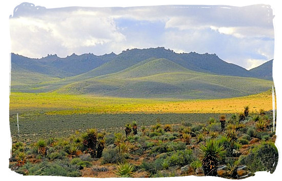 Landscape in the wider Tankwa Karoo - Tankwa Karoo National Park, National Parks in South Africa