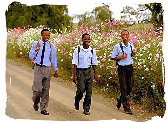 education in south africa, south african education