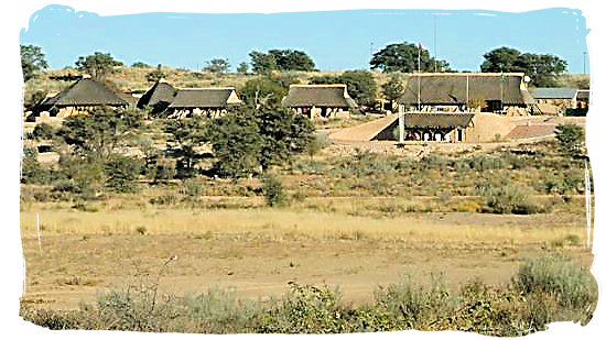 Twee Rivieren rest camp - Kgalagadi Transfrontier National Park in the Kalahari