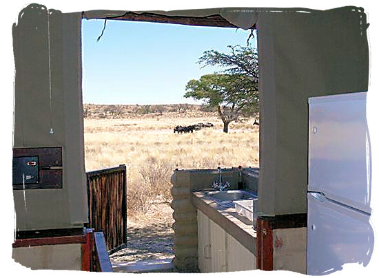 View from one of the cabins at the camp - Grootkolk Wilderness Camp, Kgalagadi Transfrontier Park