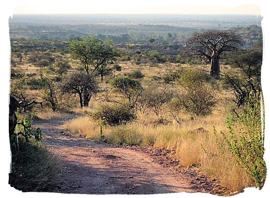 4x4 adventure trail in the Mapungubwe National Park