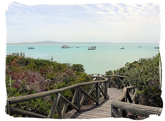 Wooden walkway down to the Lagoon's beach - West Coast National Park Activities, South Africa National Parks