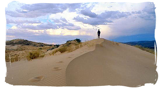 Dunes in the semi desert bushmanland of the Northern Cape Province