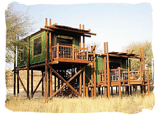 Accommodation at the camp consisting of stilted cabins - Urikaruus Wilderness Camp, Kgalagadi Transfrontier Park
