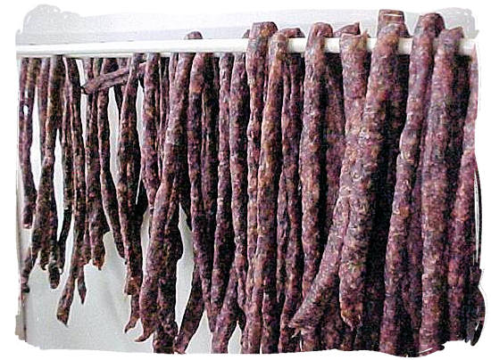 Droëwors (Dried sausage) - South African food adventure, South Africa food