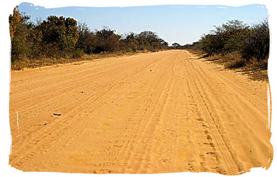 Typical dirt road in the Kgalagadi Transfrontier Park in the Kalahari, South Africa