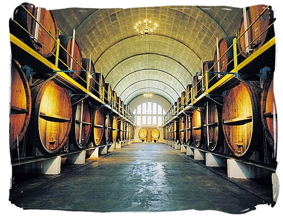 KWV Cellars renowned Cathedral Cellar with its barrel-vaulted roof - Cape Town South Africa wine country, Wine tours in South Africa