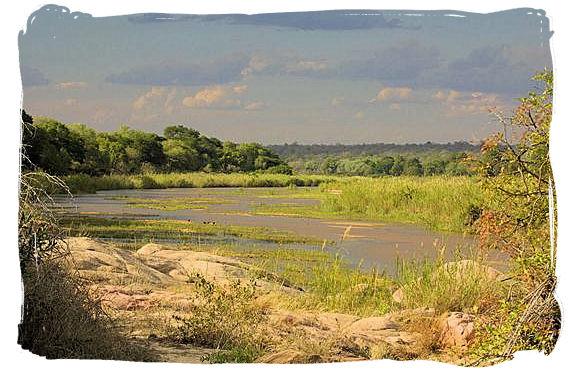 Landscape in the Kruger National Park