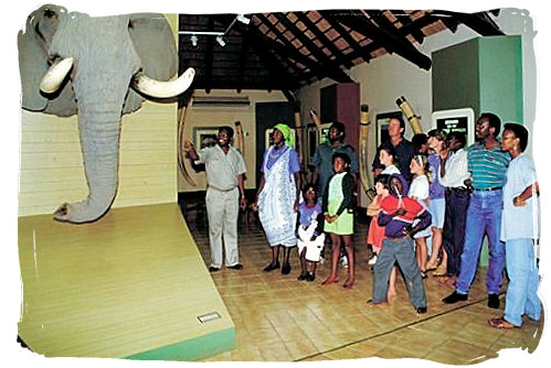 Visitors at the Letaba Elephant Hall - Letaba main rest camp, Kruger National Park, South Africa