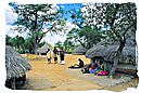 Museum scene of a traditional Tsonga village