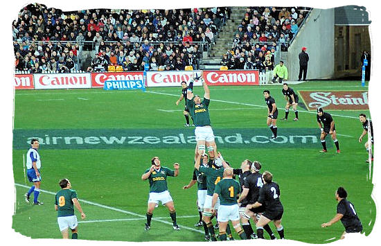 The South African springboks winning line-out ball against the All Blacks - South African Rugby, South Africa Rugby Team, Early Days